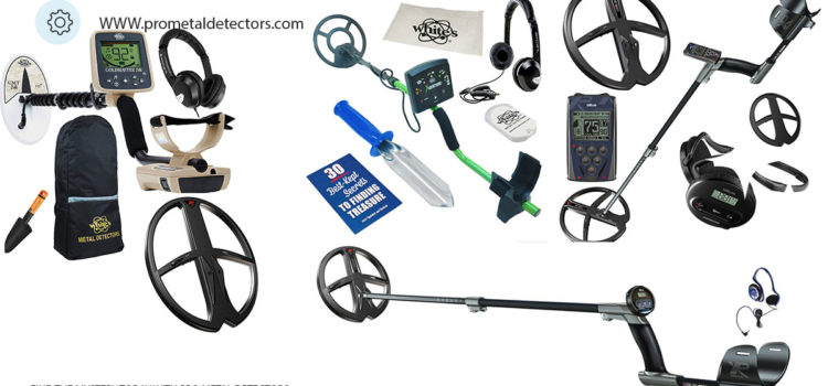 5 Best All Round Metal Detector – You Should Buy Today